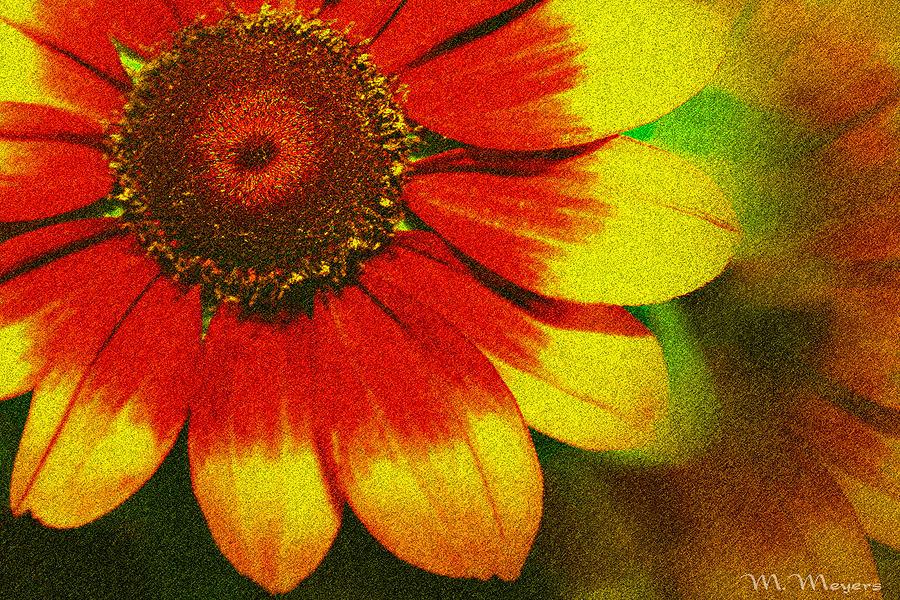 Flower Mixed Media - Bloom by Melisa Meyers