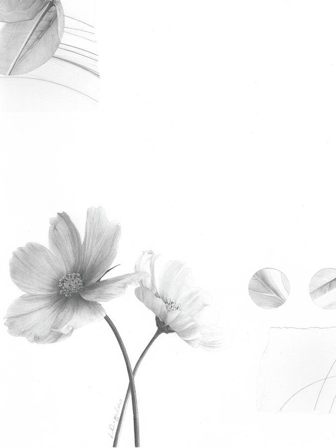 Bloom No. 2 by Lauren Bigelow