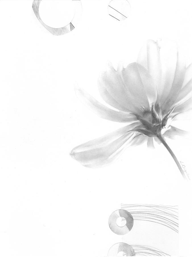 Bloom No. 5 by Lauren Bigelow
