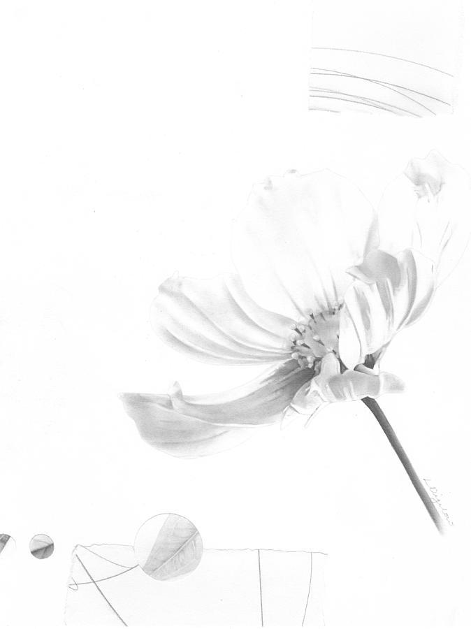 Bloom No. 7 by Lauren Bigelow