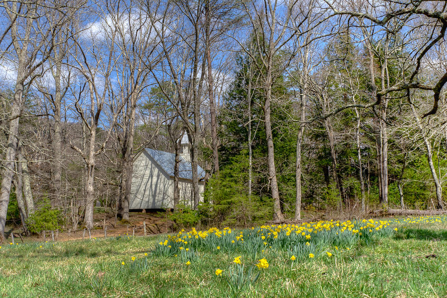 Blount County Photograph - Blooming Behind the Church by Kristina Plaas