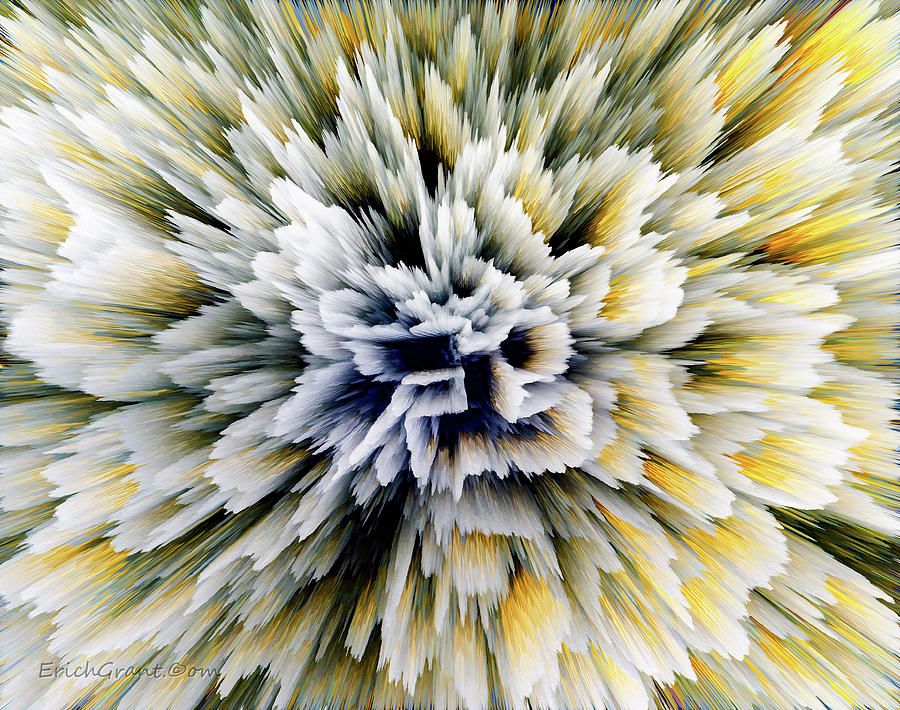 Abstract Photograph - Blooming Fixer by Erich Grant