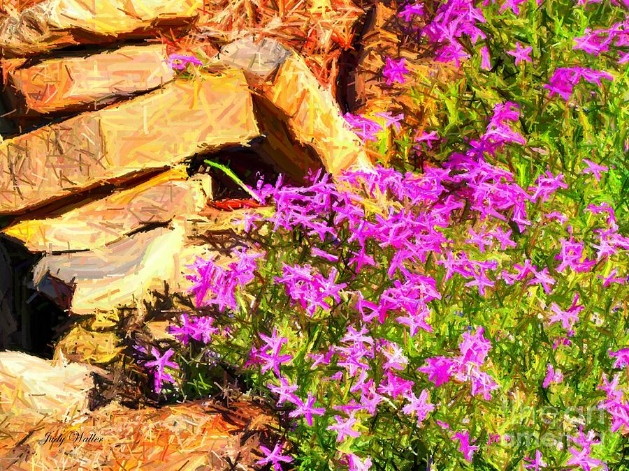 Rocks Photograph - Blooming by Judy  Waller