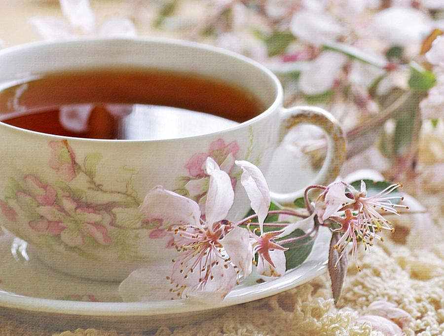 Tea Cup Photograph - Blossoms by Stephanie Calhoun