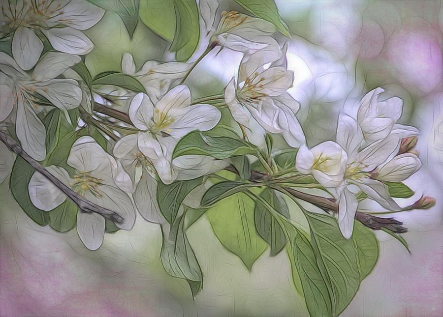 Blossoms by Renette Coachman