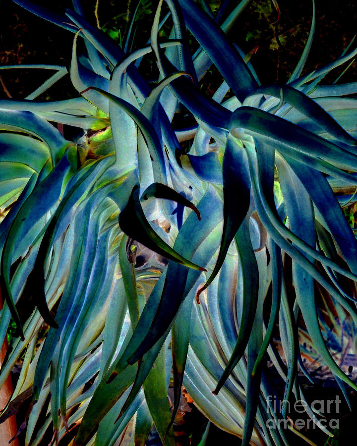 Blue Photograph - Blue Abstract Art Lorx by Rebecca Margraf