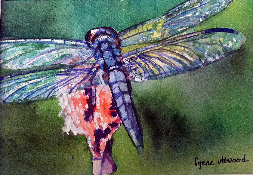 Dragonfly Painting - Blue and Green Dragonfly by Lynne Atwood