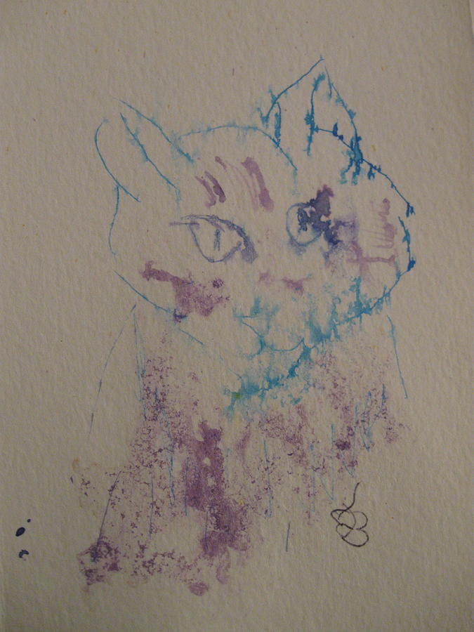 blue and purple cat by AJ Brown