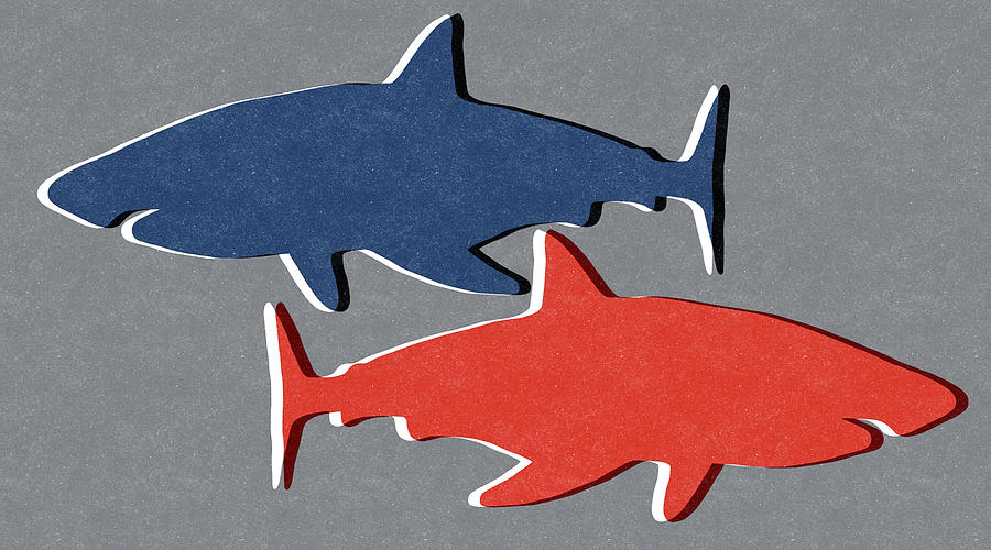 Blue And Red Sharks Mixed Media