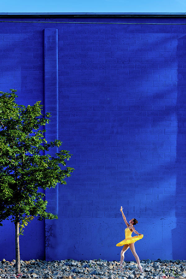 Blue and Yellow- Urban by Dave Koch