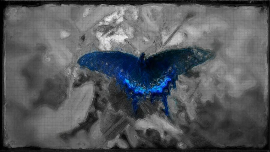 Delicate Digital Art - Blue Butterfly In Charcoal And Vibrant Aqua Paint by MendyZ