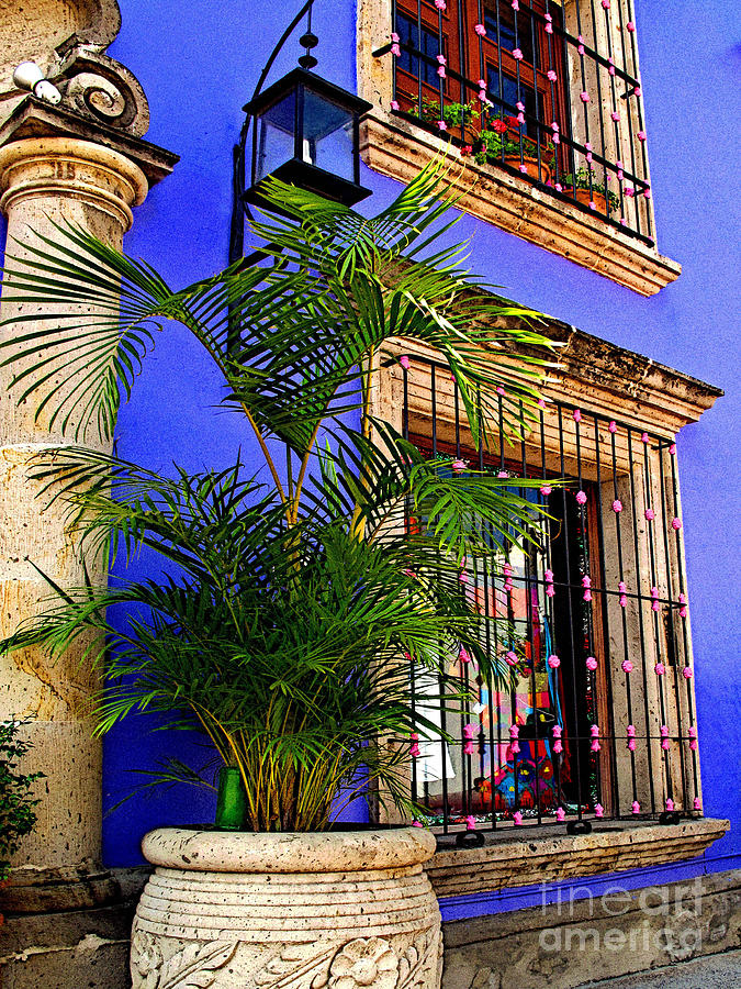 Tlaquepaque Photograph - Blue Casa With Fern by Mexicolors Art Photography