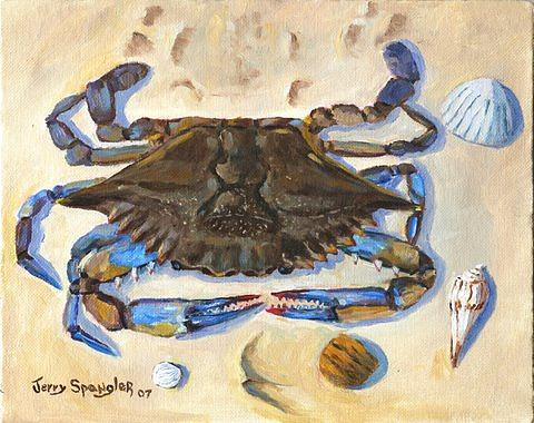 Crab Painting - Blue Claw Crab by Jerry Spangler
