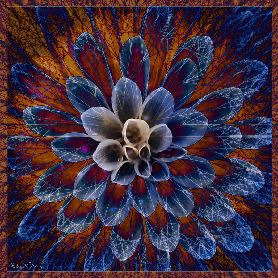 Blue Dahlia Digital Art By Barbara Berney