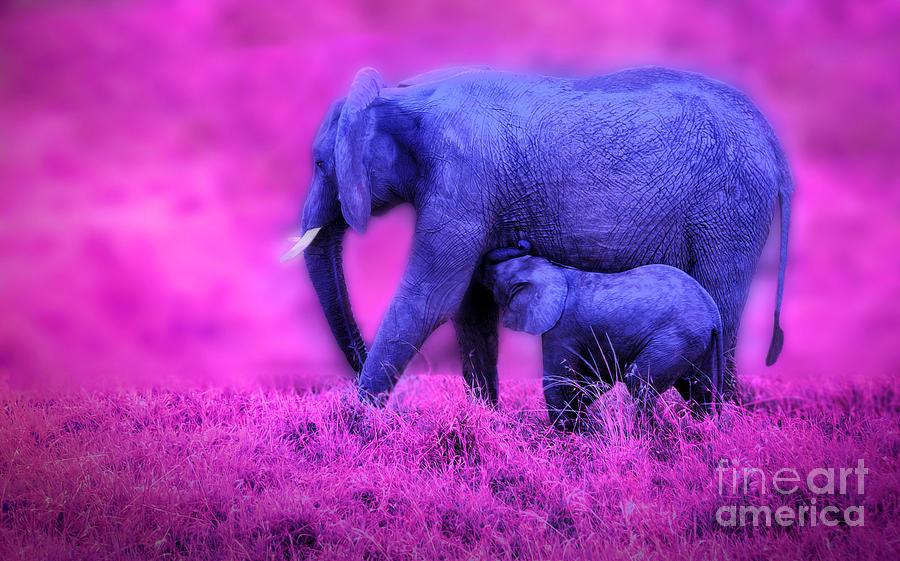 Blue Elephants Photograph