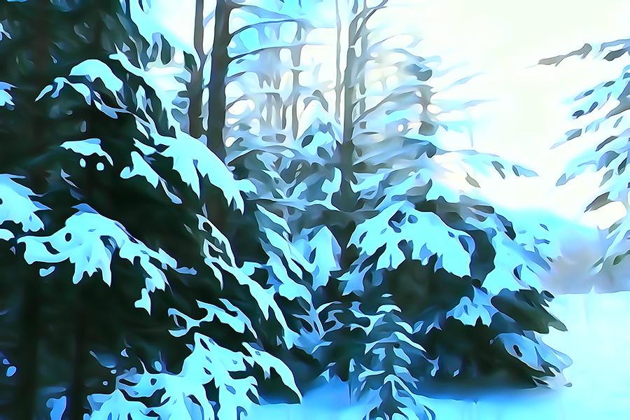 Blue Evergreen  Boughs by Greg Hammond