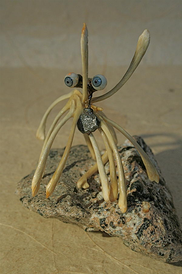 Sculpture Sculpture - Blue Eye Spider by Ruth Edward Anderson