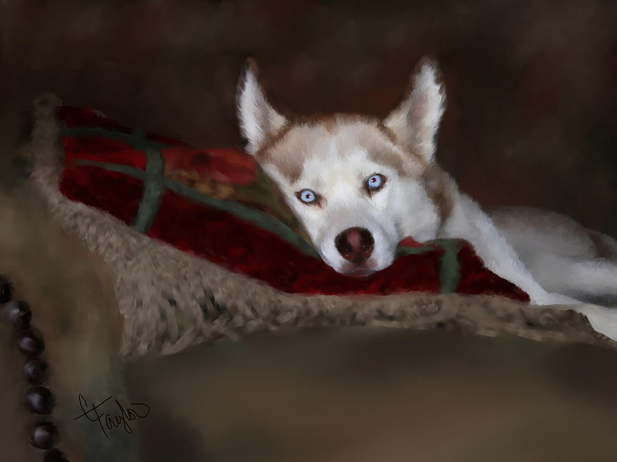 Dog Painting - Blue Eyes by Colleen Taylor