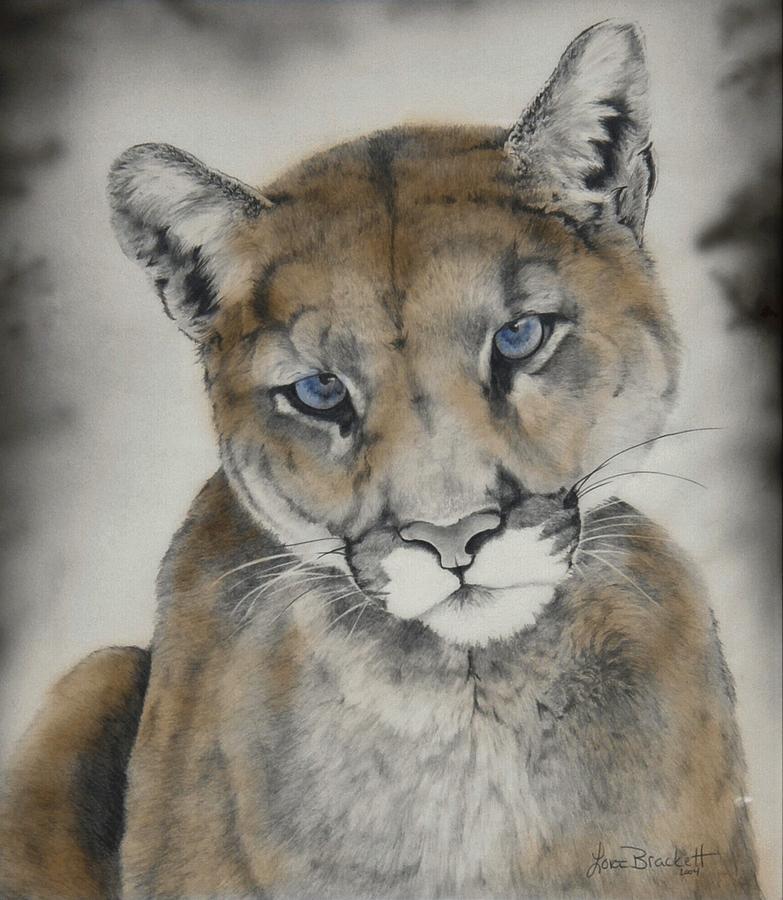 Cougar Painting - Blue Eyes by Lori Brackett