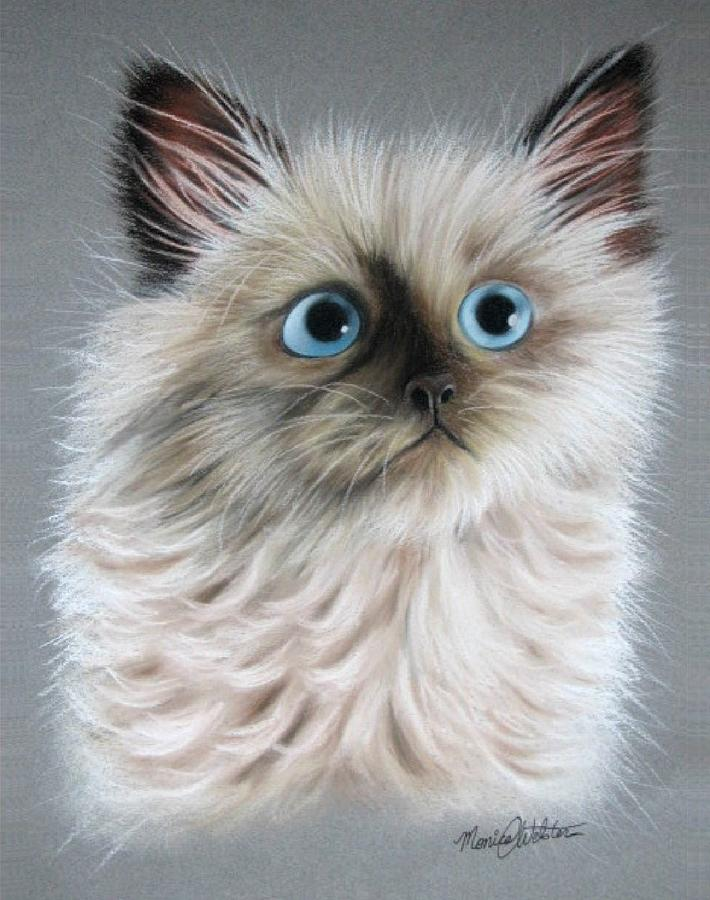 Cat Painting - Blue Eyes by Monica  Webster