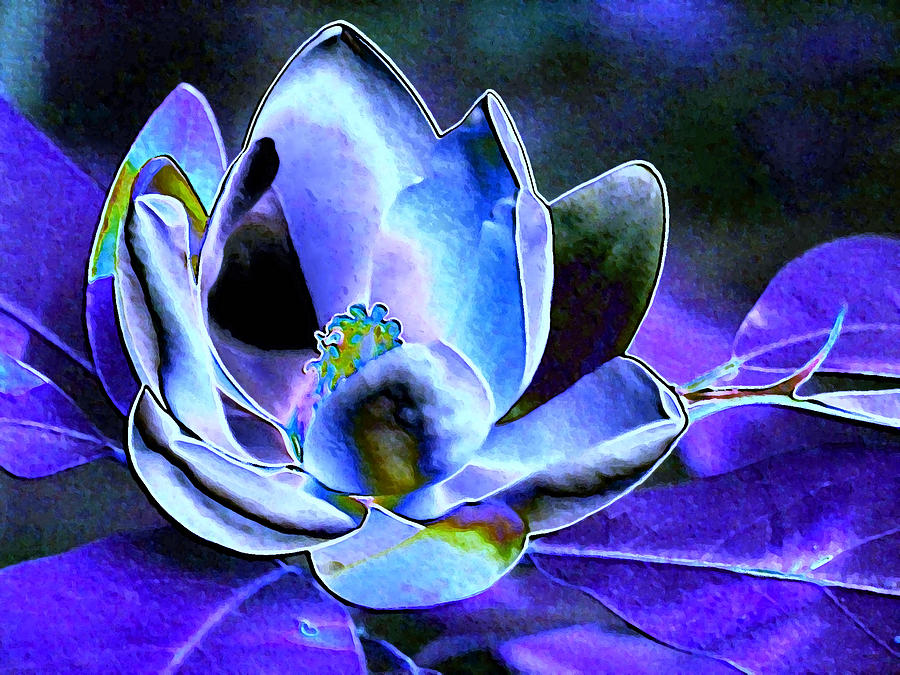 Blue Foil Magnolia by Carolyn Jacob