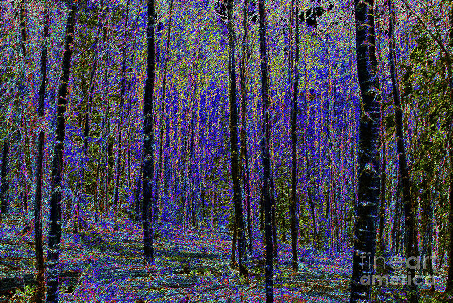 Artwork Painting - Blue Forest by David Lee Thompson