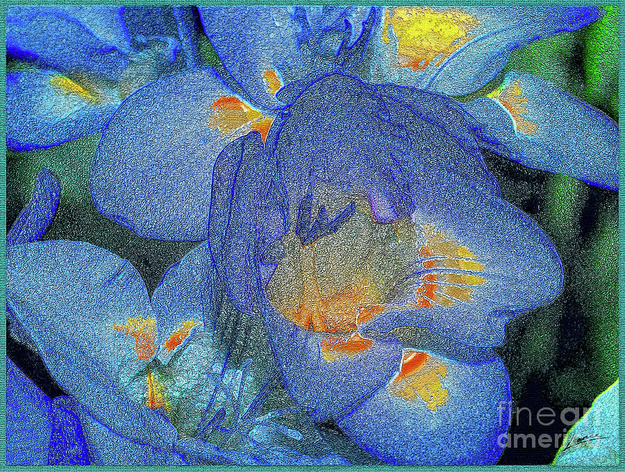 Blue Freesia's by Lance Sheridan-Peel