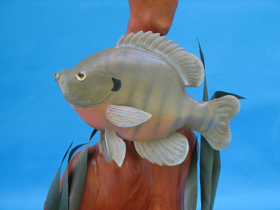 Woodcarving Sculpture - Blue Gill by Jack Murphy