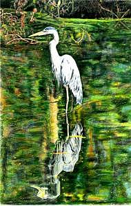 Blue Heron Drawing - Blue Heron Crane by Luke Lauch