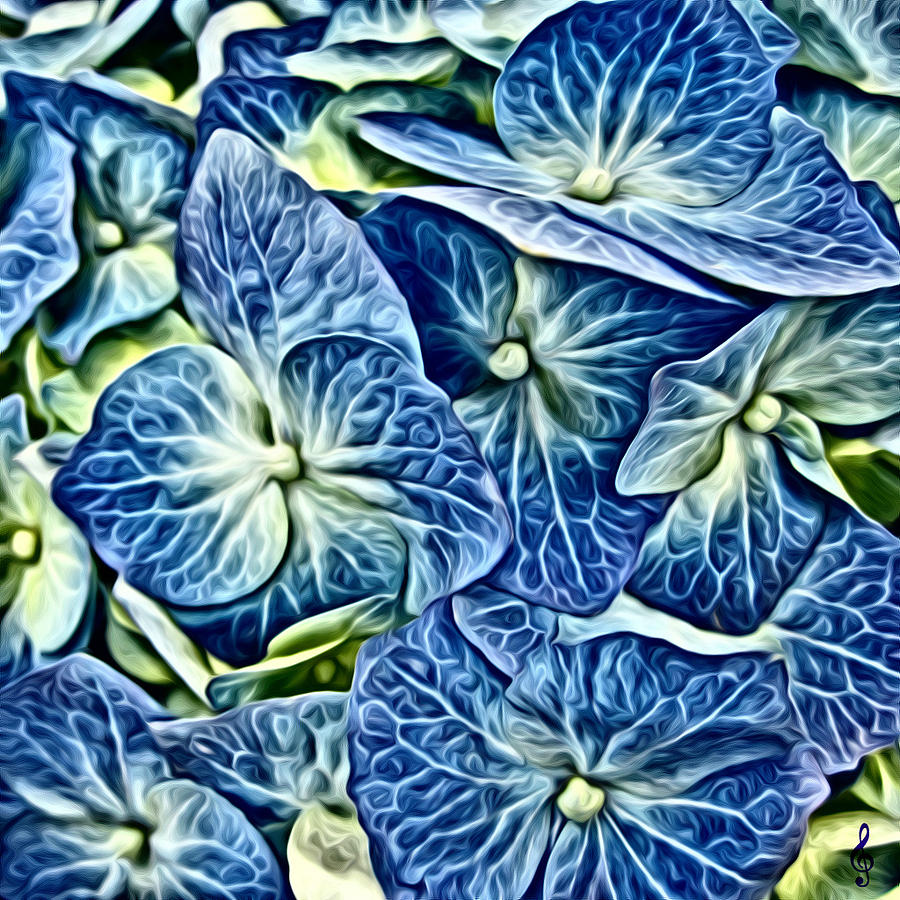 Blue Hydrangeas by Treble Stigen
