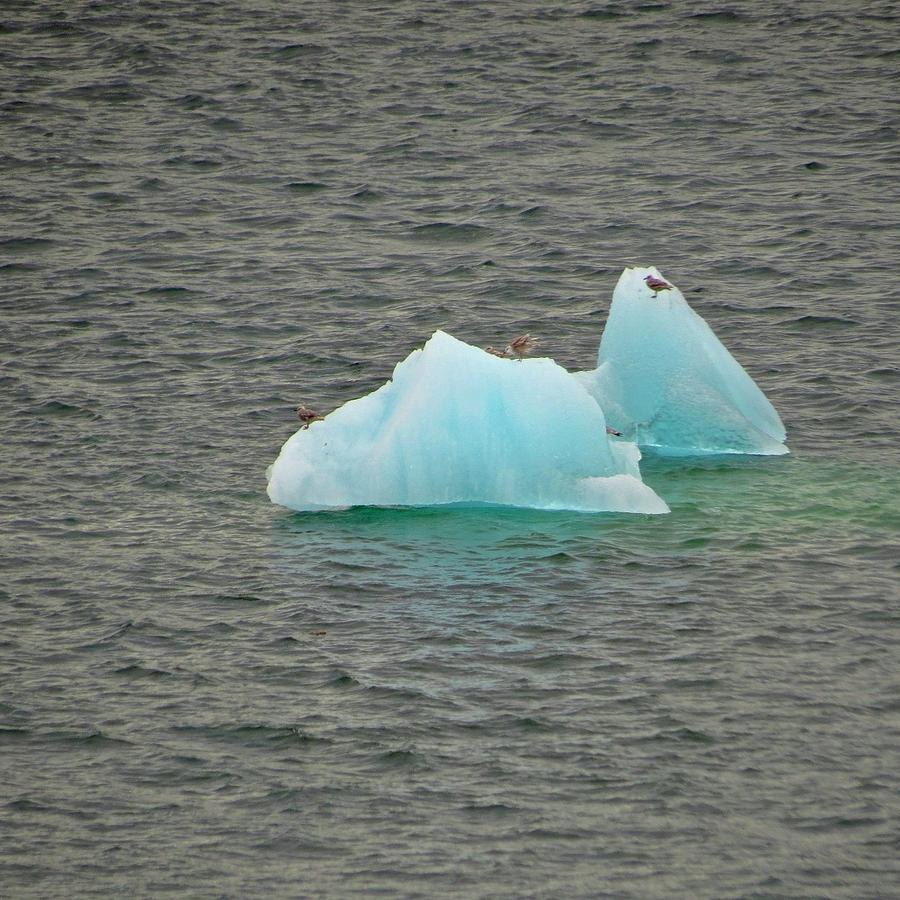 Blue Ice Photograph by Bill Jordan