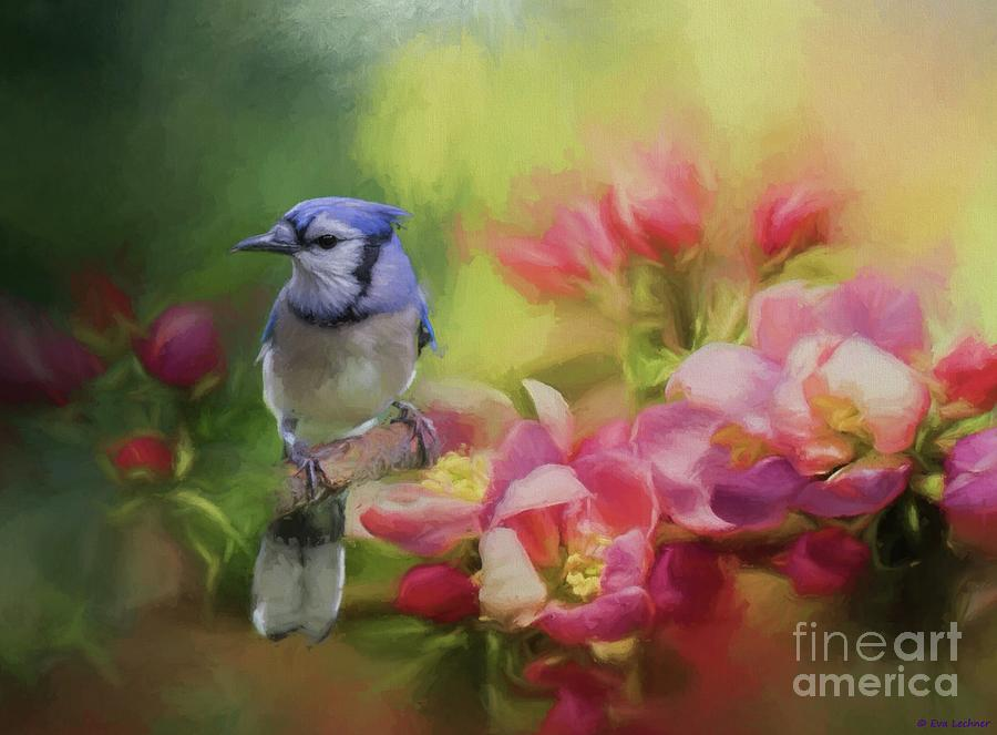 Blue Jay Mixed Media - Blue Jay on a Blooming Tree by Eva Lechner