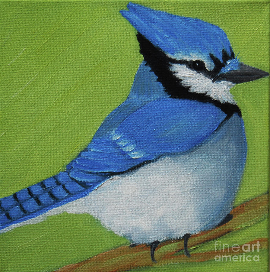 Blue Jay by Victoria Page