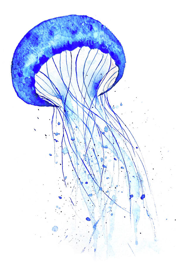 Blue Jellyfish Watercolor Painting by Color Color