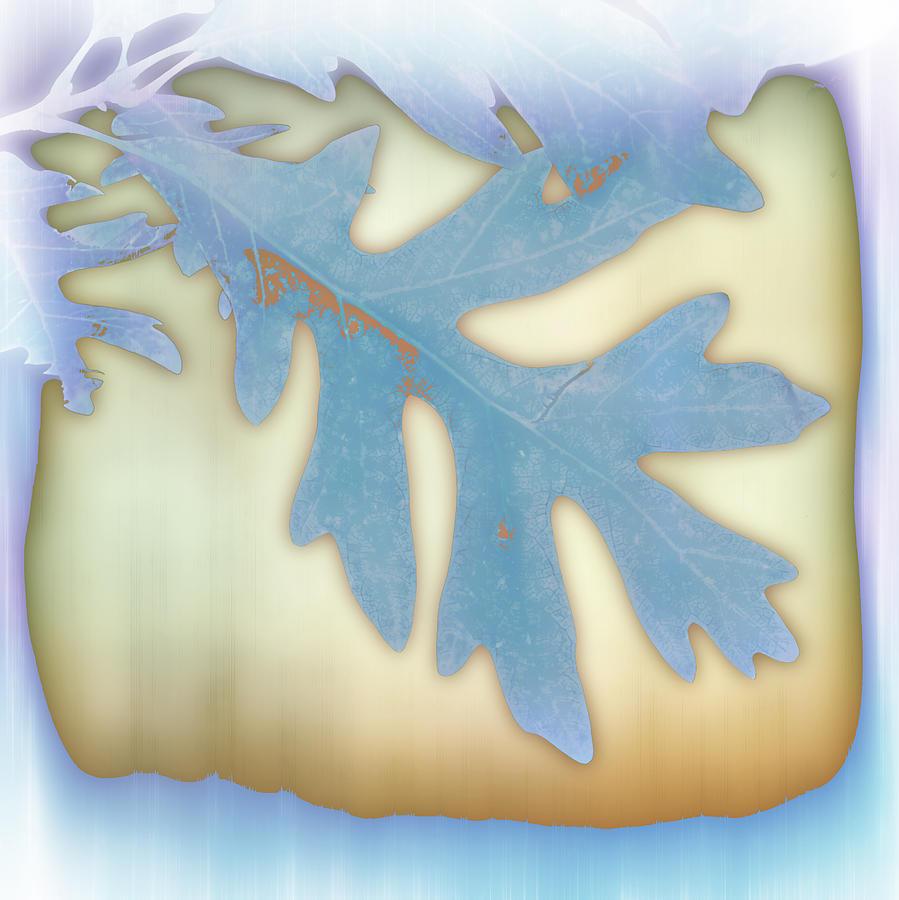Leaf Photograph - Blue Leaf by Ann Powell