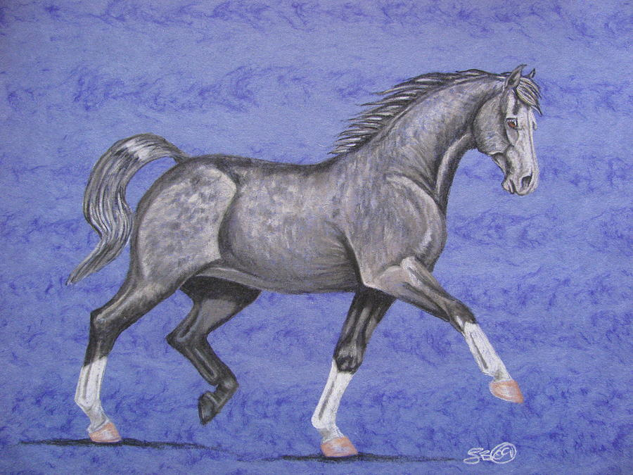 Horse Drawing - Blue by Leslie Becker