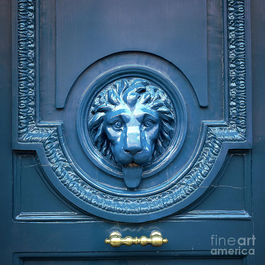 Blue lion head door by Ivy Ho