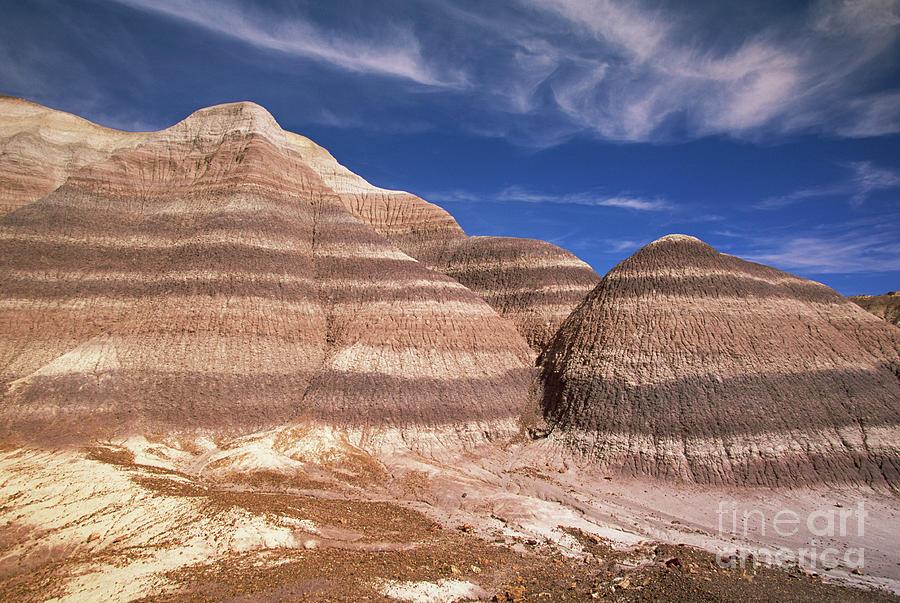 Blue Mesa, Arizona Photograph by Yva Momatiuk and John Eastcott