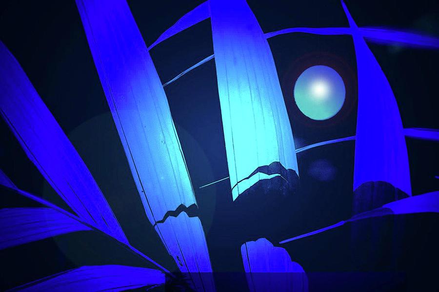 blue moon by Rochelle Berman