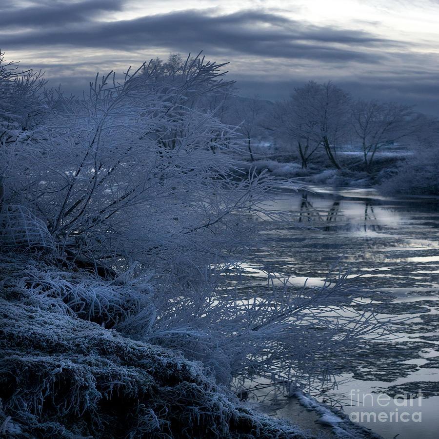 Winter Photograph - Blue Morning by Angel Ciesniarska