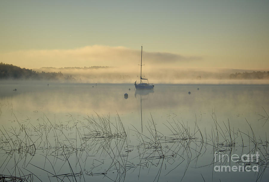 The Blue Hour Photograph - Blue Morning by Diana Nault