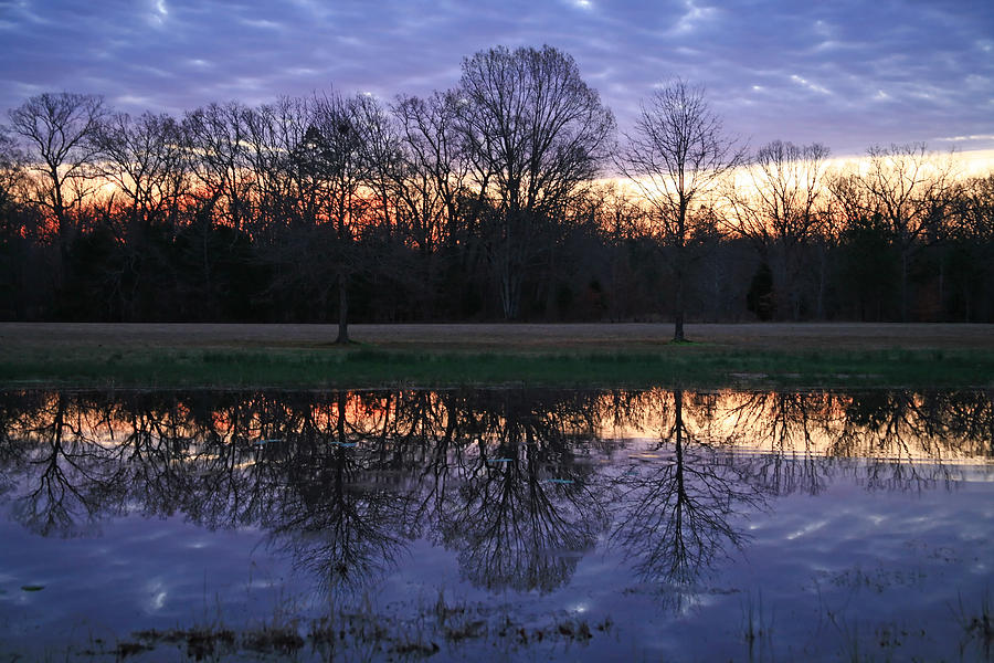 Sunrise Photograph - Blue Morning by James Jones