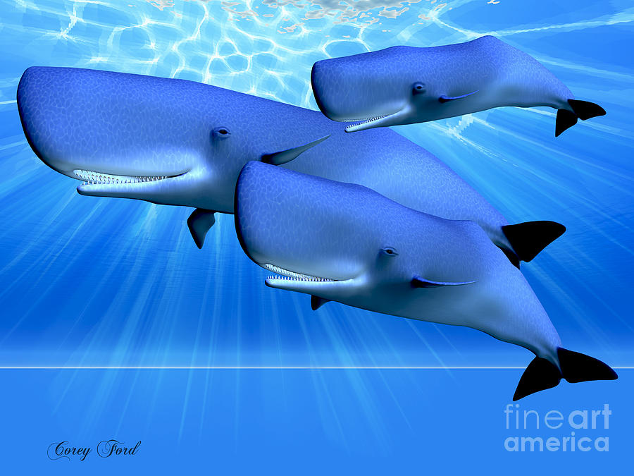 Whale Painting - Blue Ocean by Corey Ford