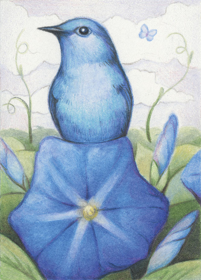 Atc Drawing - Blue On Blue by Amy S Turner