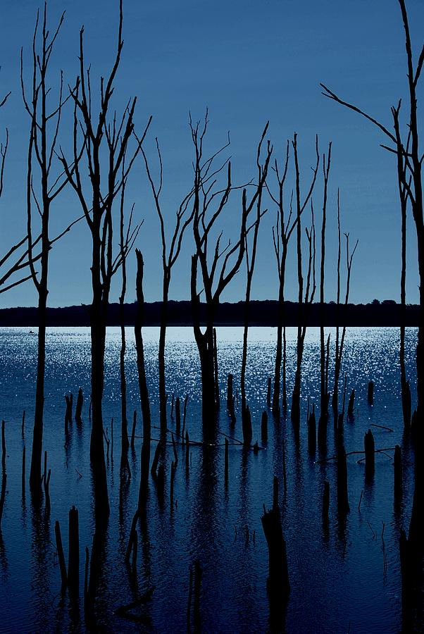 Nature Landscapes Photograph - Blue Reservoir - Manasquan Reservoir by Angie Tirado