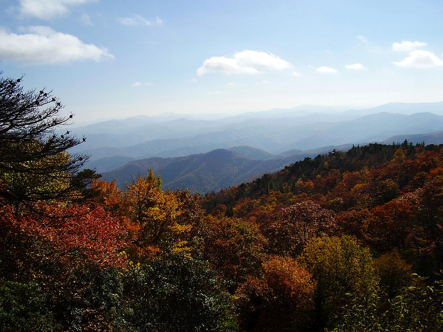 Blue Ridge Mountains Photograph - Blue Ridge Mountains by Flavia Westerwelle