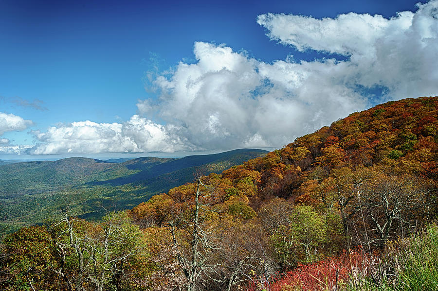 Blue Ridge Mountains In The Fall 1 Photograph