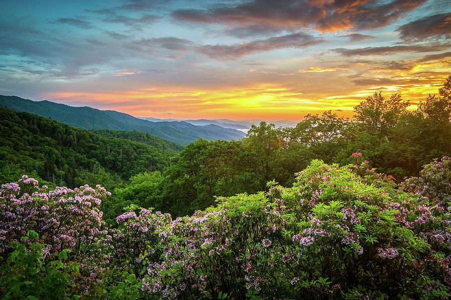 Blue Ridge Mountains Nc Mountain Laurel Sunset
