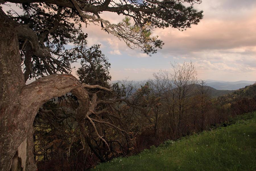 Blue Ridge Mountains Photograph - Blue Ridge Mts by Joseph G Holland