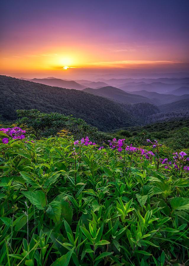 Craggy Gardens Photograph - Blue Ridge Parkway - Appalachian Charm by Jason Penland